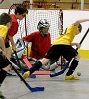 Tournoi de hockey-balle 2016